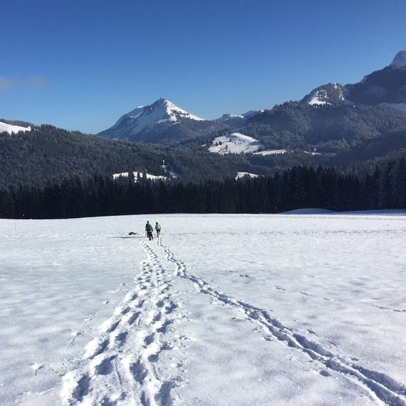 Swiss Snowflakes