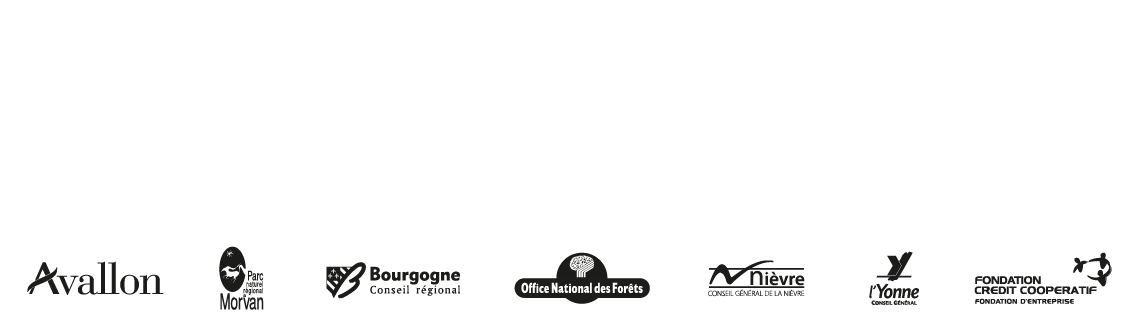 Bandeautrailwalker2015ok 01