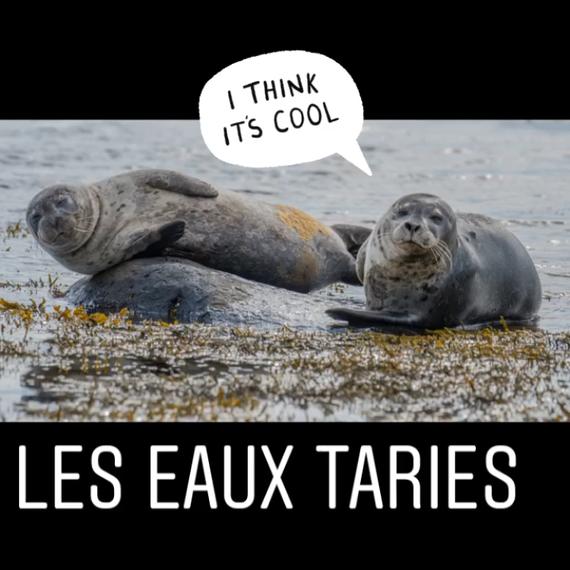 081. Les Eaux Taries